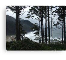 Coastline - near Florence, Oregon Canvas Print