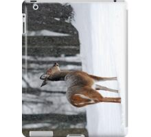 Snowy White-tailed Deer iPad Case/Skin