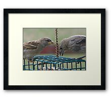 They Mingled with Sparrows Framed Print