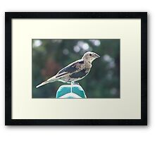They`re Different Framed Print