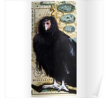 BIRD WOMAN of Mississippi - mixed media assemblage art Poster