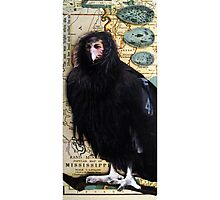 BIRD WOMAN of Mississippi - mixed media assemblage art Photographic Print