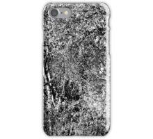 WetLands - A View  iPhone Case/Skin