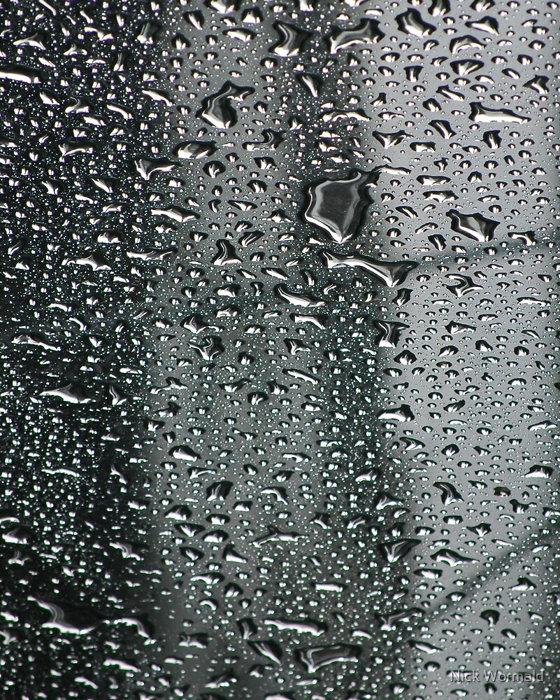 rain on the glass roof by Nick Wormald