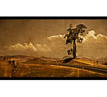 The Boonah Road Photographic Print