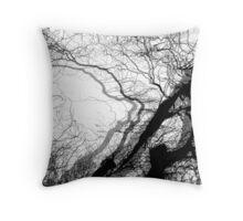 Corkscrew Willow Throw Pillow