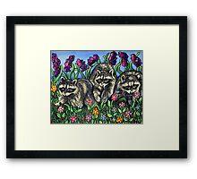 Racoons in The Garden Framed Print
