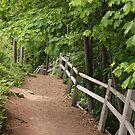 Peaceful Trail by AbigailJoy