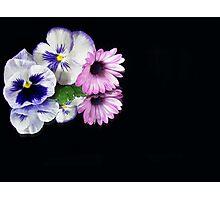 Double Colors Photographic Print