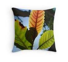 The light of this leaf Throw Pillow