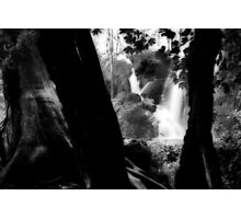 Plitvice Photographic Print