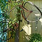 Bike Up A Tree by phil decocco