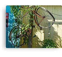 Bike Up A Tree Canvas Print