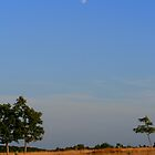 Blue Moon by andrea1227