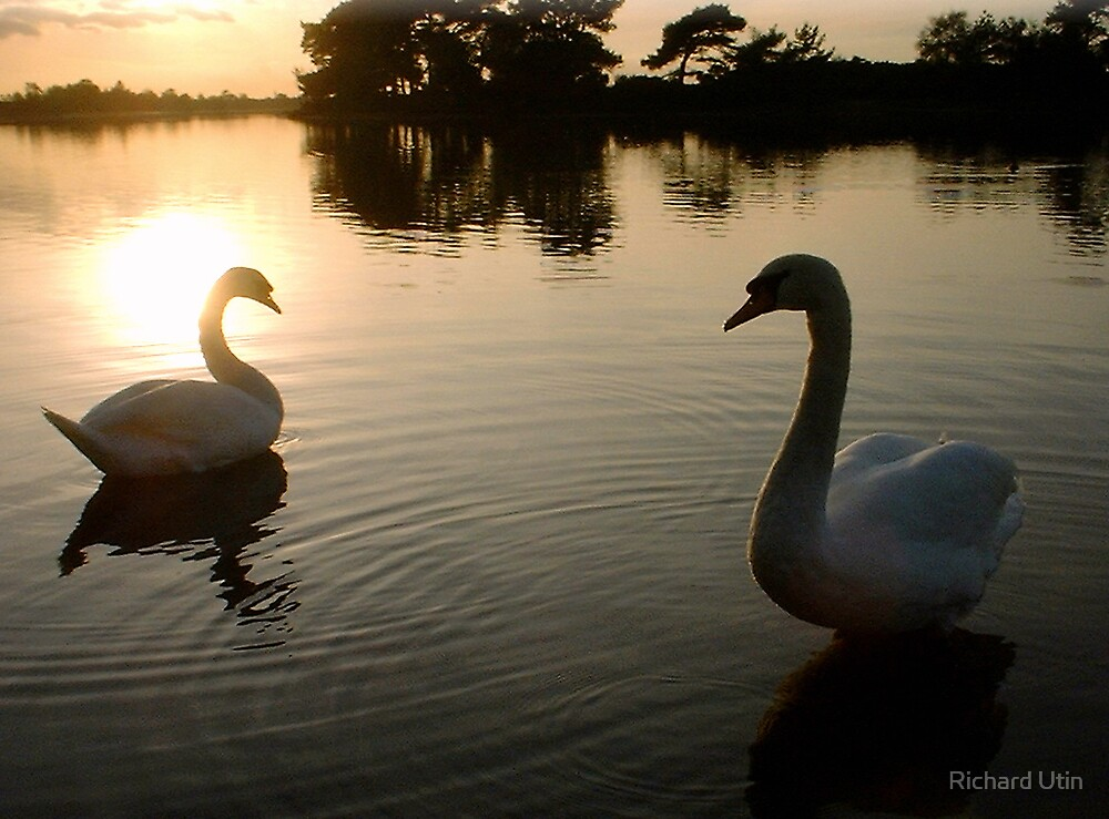 On golden pond by Richard Utin