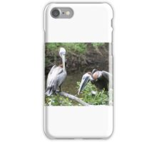 Silly Pelicans iPhone Case/Skin