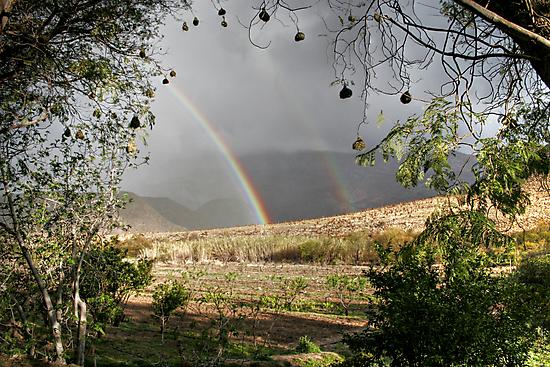 Rainbow Frame by Deon de Waal