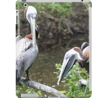 Silly Pelicans iPad Case/Skin
