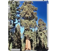 Sequoia National Park Majesty iPad Case/Skin