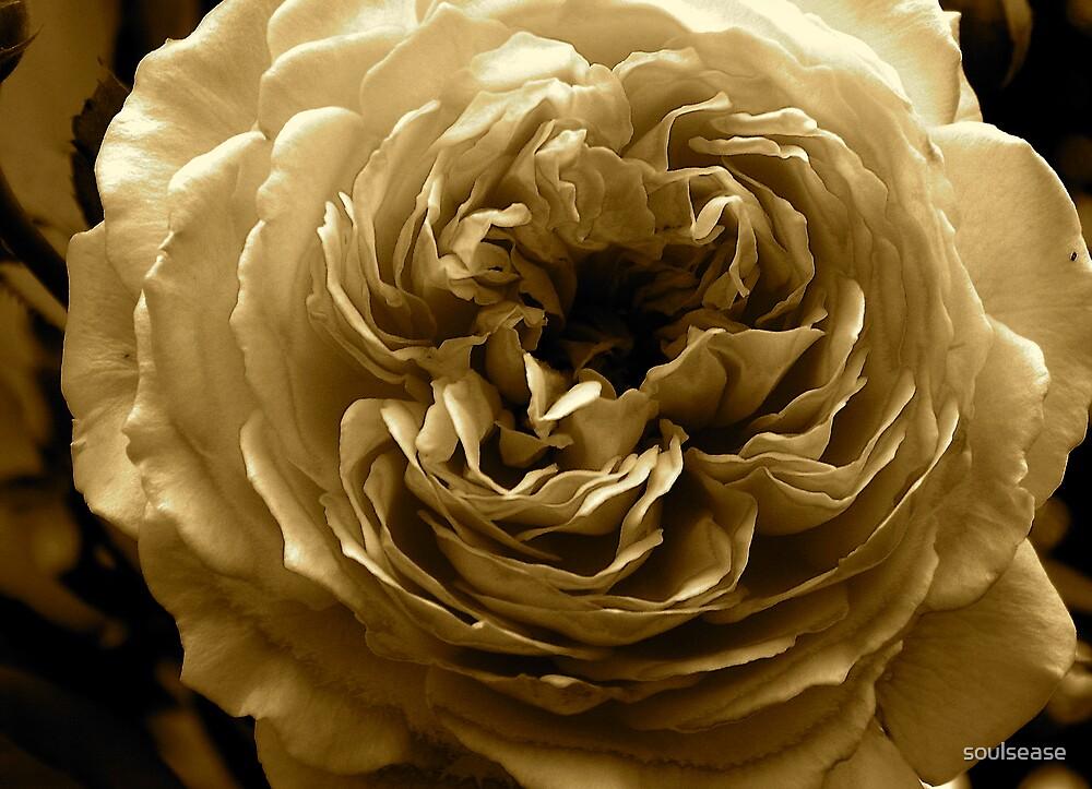 crown princess margaret' by soulsease