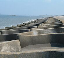 COASTAL DEFENCE by PhotogeniquE IPA