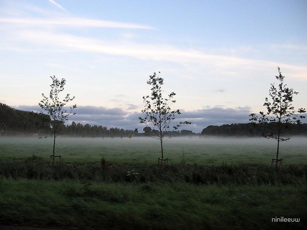 Morning mist by ninileeuw