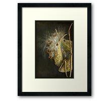 Soft as a Whisper Framed Print