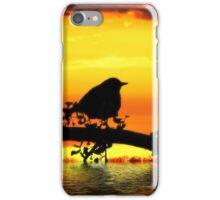 Bird on  fire  iPhone Case/Skin