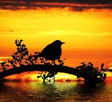 Bird on  fire  by LudaNayvelt