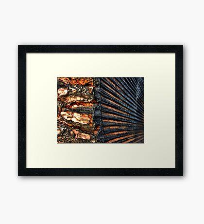Slice of Life Framed Print