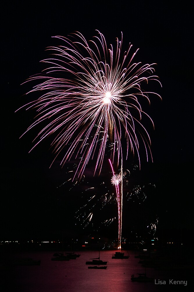 Fireworks over the Bay by Lisa  Kenny
