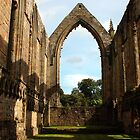 Bolton Abbey by Steve