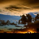 Outback canvas by Pete Chennell