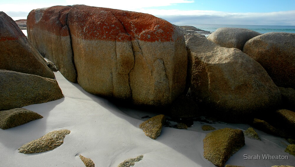 Bay of Fires by Sarah Wheaton