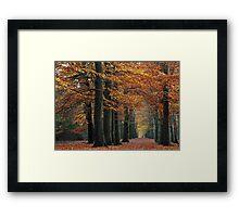 While the leaves kept falling Framed Print