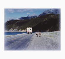 Alaska Canadian Highway One Piece - Short Sleeve