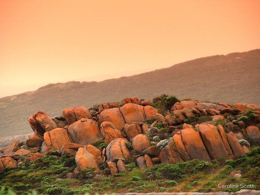 Rocks by Caroline Scott