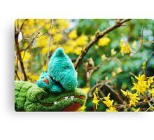 Gator McBumpypants and Herman smell the flowers Canvas Print