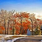 Change of Seasons by Lois  Bryan