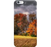 Falling Into Winter iPhone Case/Skin