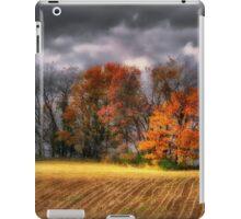 Falling Into Winter iPad Case/Skin