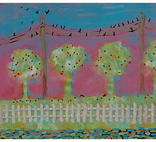 BIRDS ON A WIRE (sold) Photographic Print