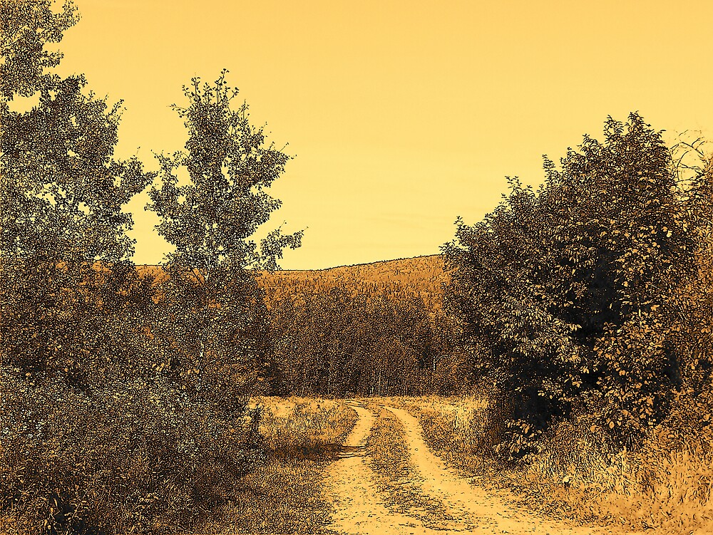 Country Road by Gene Cyr