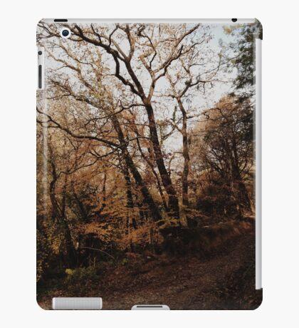 Autumn walks. iPad Case/Skin