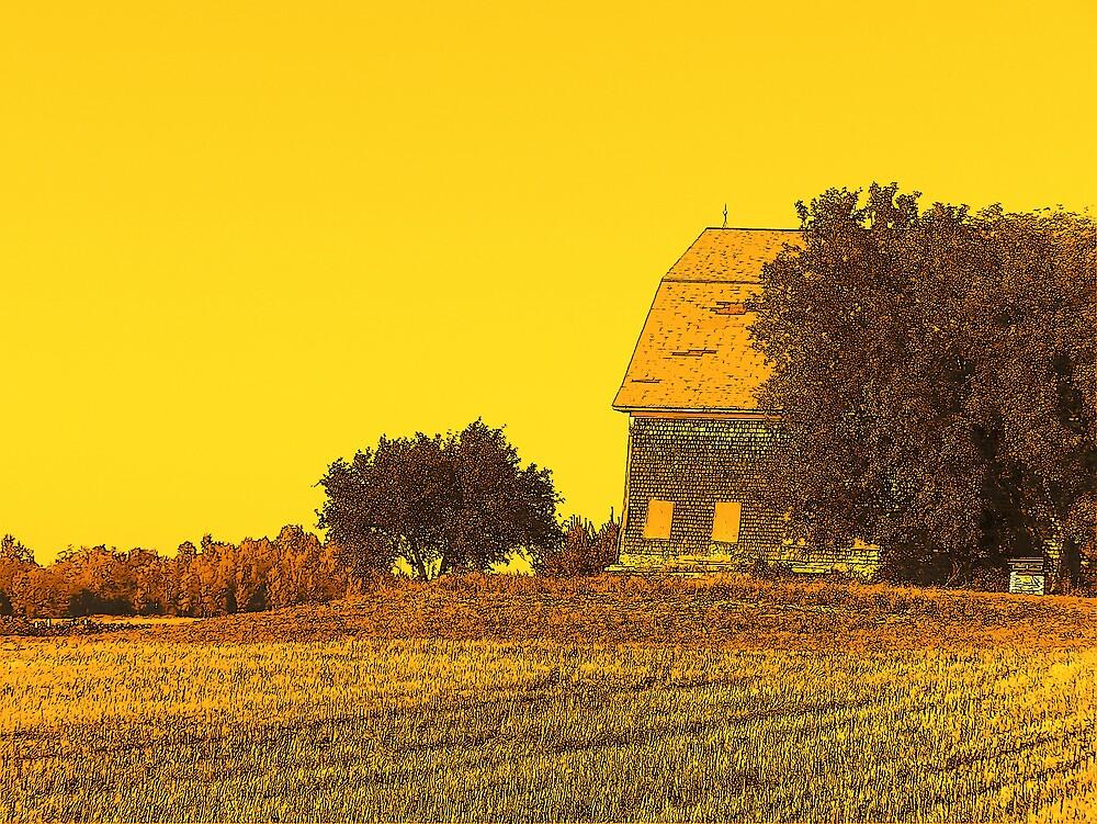 Barn by Gene Cyr