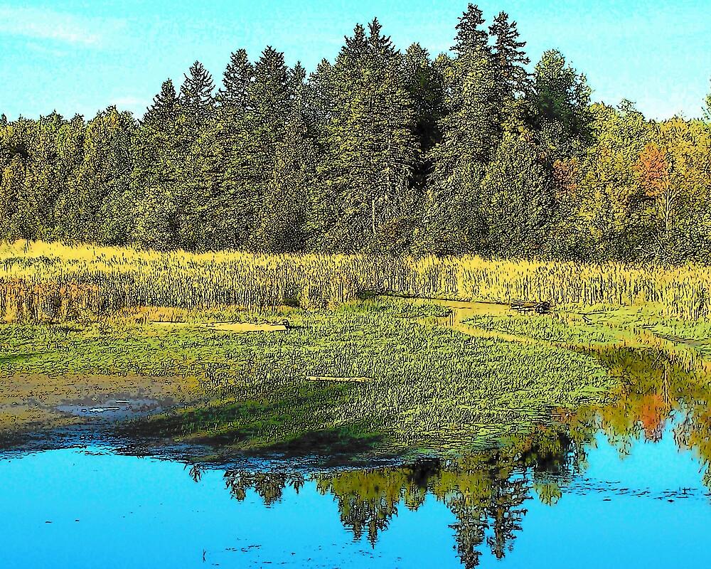 Reflected Pond by Gene Cyr