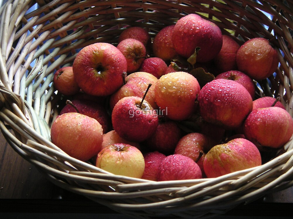 basket of apples by gothgirl
