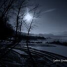 Yuletide Greetings by WildThingPhotos