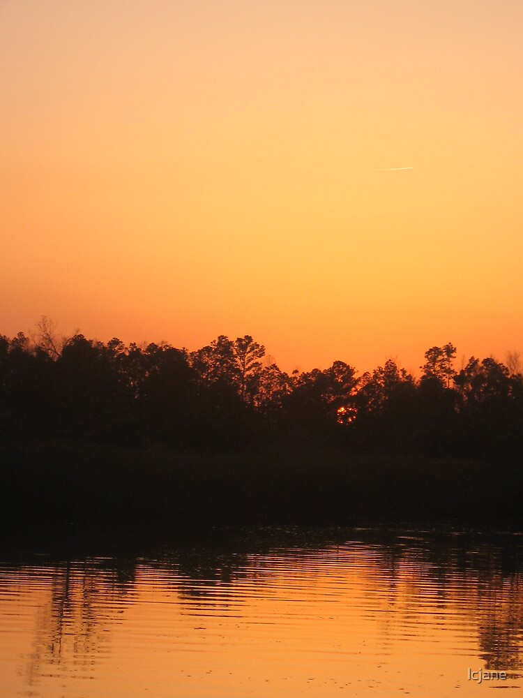 Reflection on the Bayou by lcjane