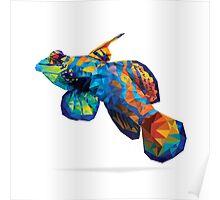 Geometric Abstract Mandarin Dragonette Goby Poster
